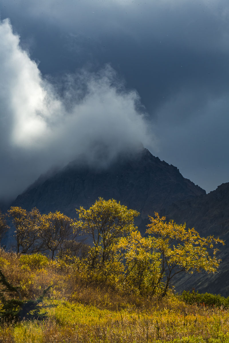 A shaft of sunlight cuts through dark clouds to light up fall colors in Chugach State Park.