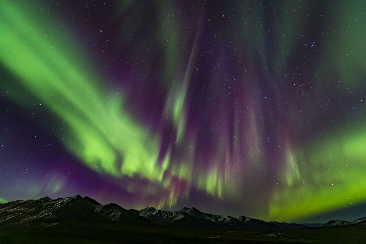 The aurora borealis dances over the Brooks Range at Chandalar Shelf in autumn.