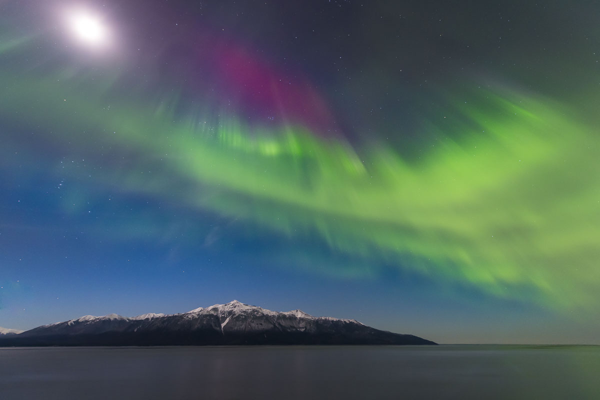 The Kenai Mountains seem small under a sky-fillling aurora borealis in early November. A bright moon cannot overpower the strenght...