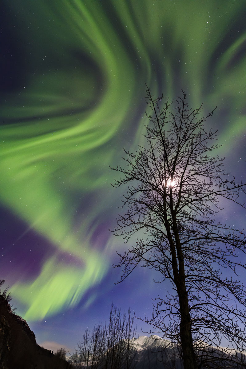 Alaska, Southcentral Alaska, Turnagain Arm, aurora borealis, nighttime, northern lights, winter, photo
