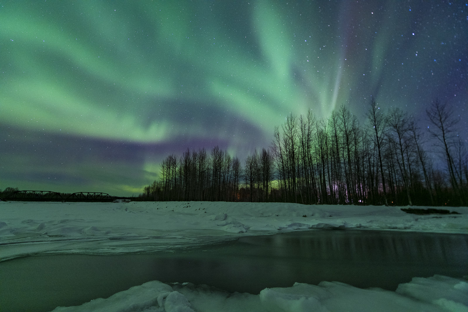 While out photographing the aurora borealis on the frozen Susitna River near Talkeetna, I found a patch of open water. I photographed...