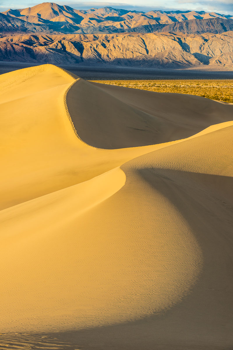 Light and shadow play on the Mesquite Sand Dunes, Death Valley National Park, California.