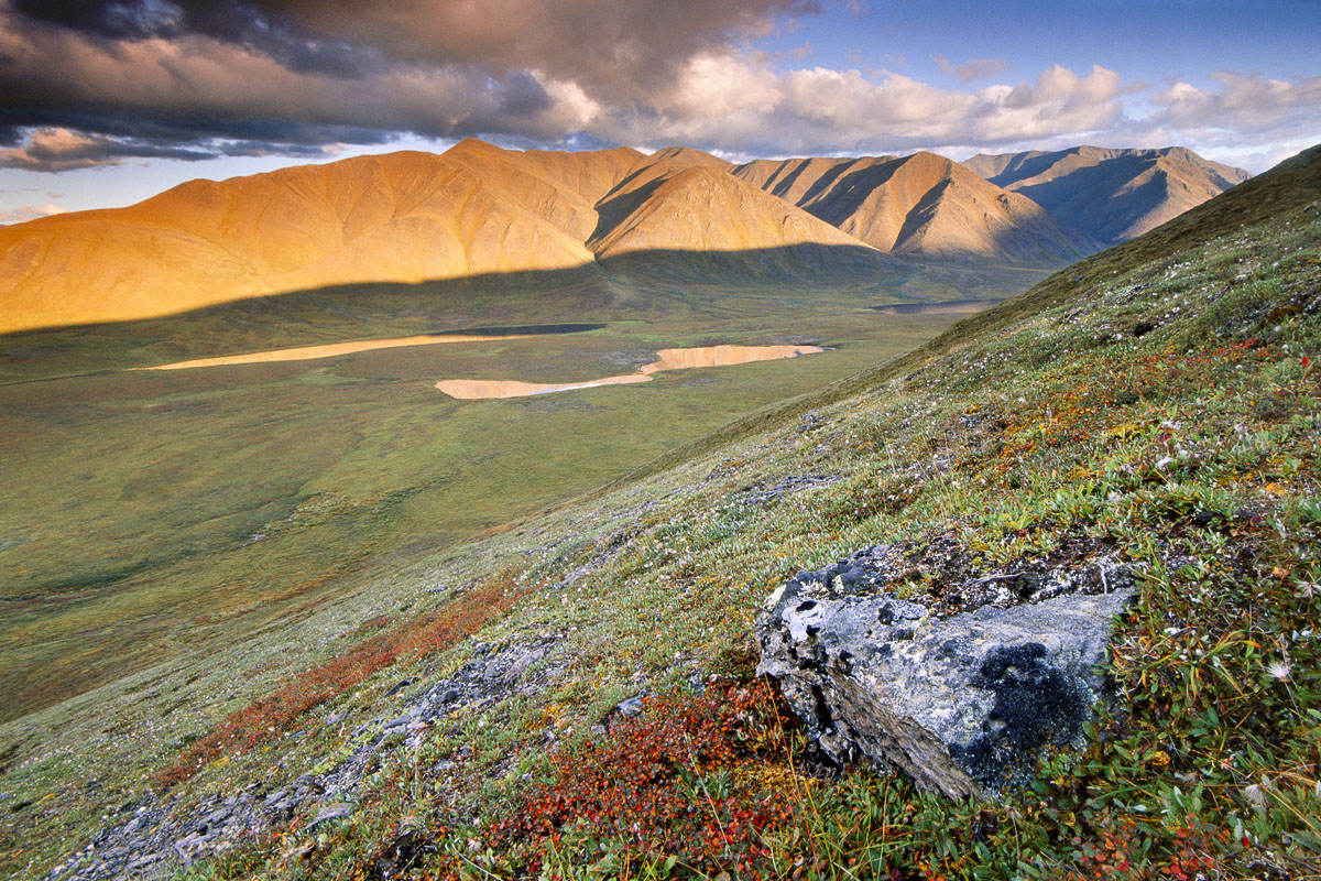 Alaska, Alatna River, Arctic, Brooks Range, Gates of the Arctic National Park & Preserve, evening, headwaters, landscape, national park, sunset, tundra, photo