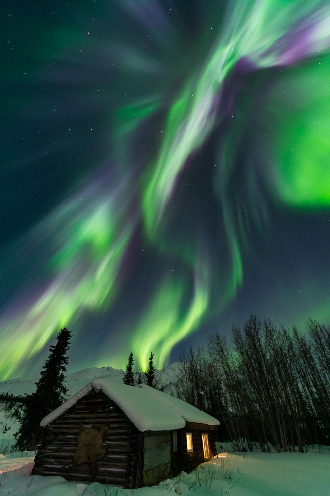 The aurora borealis soars over the Johnson cabin in Wiseman, Alaska.